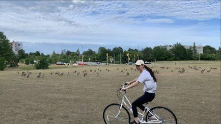 Lea Zhu cycling
